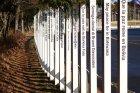 Peace path