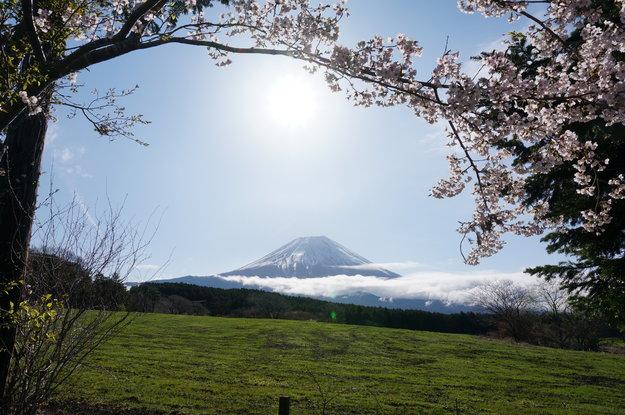 Fuji Sanctuary   Byakko Shinko Kai