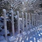 fs winter 12