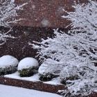 fs winter 13