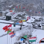 fs winter 14
