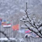 fs winter 16